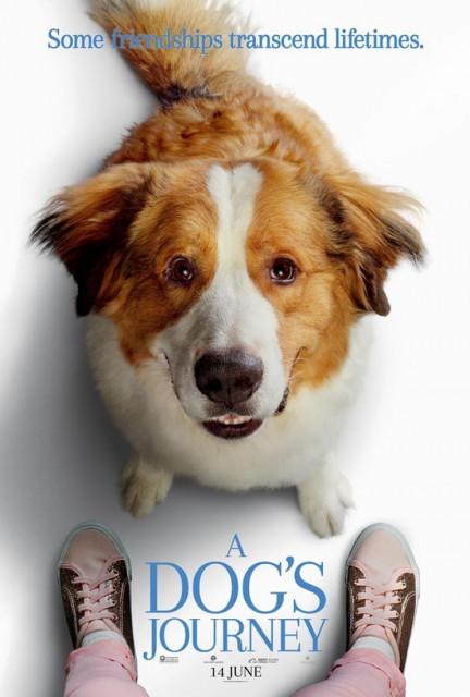 Dog's Journey, A